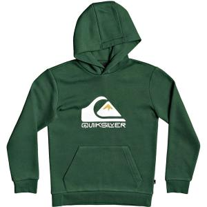 Mikina Quiksilver BIG LOGO HOOD YOUTH GREENER PASTURES